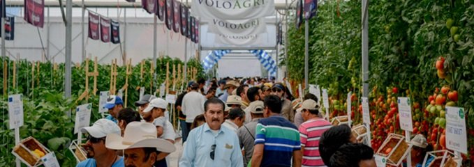 MexicoExpo2017_small-211
